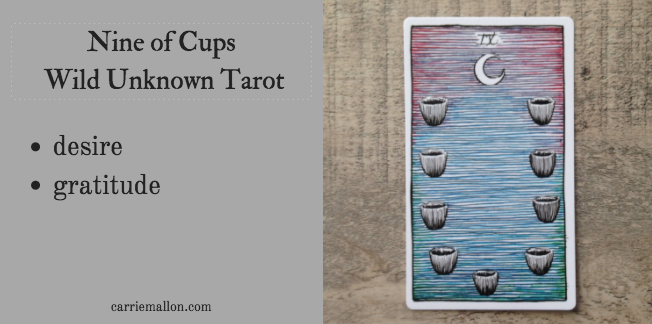 Nine of Cups :: Wild Unknown Tarot Card Meanings | Carrie Mallon