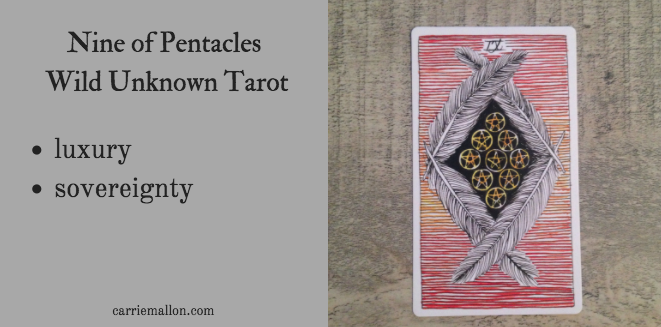 Nine of Pentacles :: Wild Unknown tarot card meanings