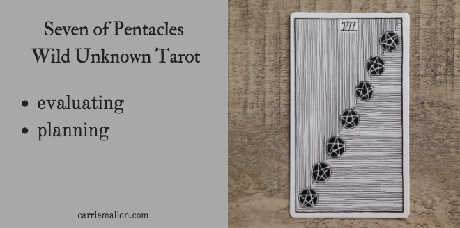 Seven of Pentacles :: Wild Unknown Tarot Card Meanings