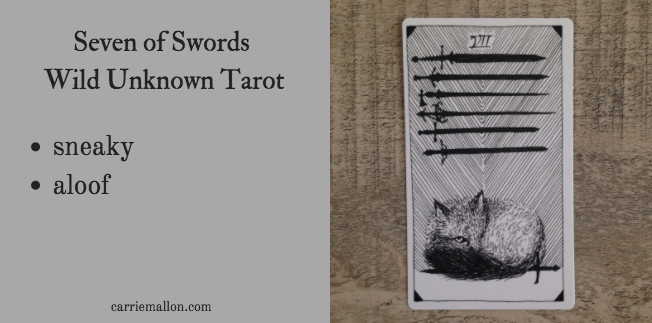 Seven of Swords :: Wild Unknown Tarot Card Meanings | Carrie