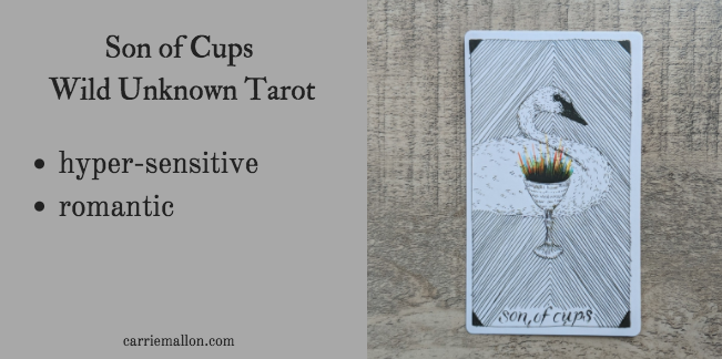 Son of Cups :: Wild Unknown Tarot Card Meanings | Carrie Mallon