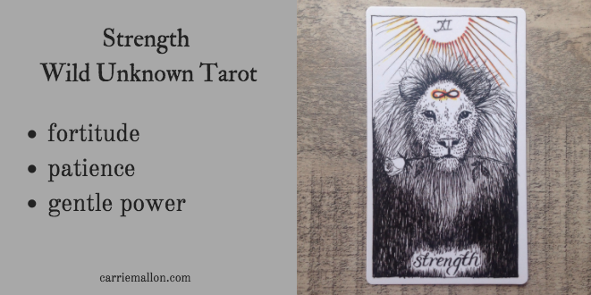 Strength :: Wild Unknown Tarot Card Meanings | Carrie Mallon