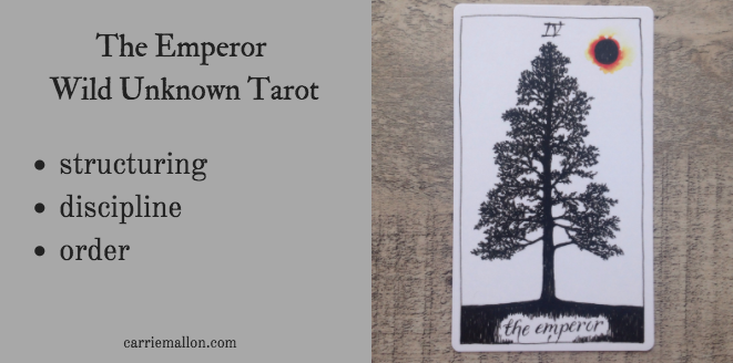The Emperor :: Wild Unknown Tarot Card Meanings | Carrie Mallon