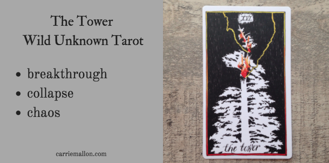 The Tower :: Wild Unknown Tarot Card Meanings | Carrie Mallon