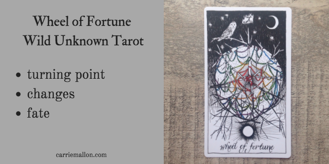 Wheel of Fortune :: Wild Unknown Tarot Card Meanings