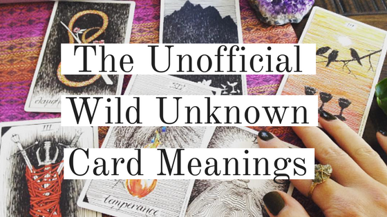 The Wild Unknown :: Tarot Card Meanings