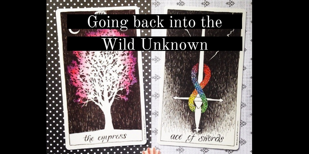Going back into the Wild Unknown + other updates