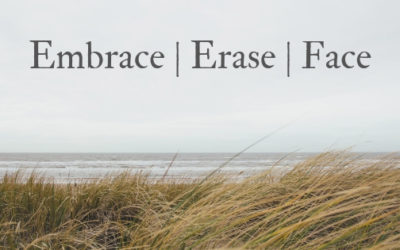 Embrace, Erase, Face