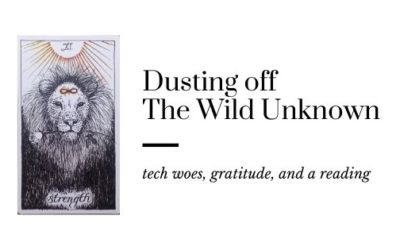 Dusting off the Wild Unknown