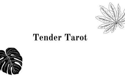 Tender (or tender) tarot